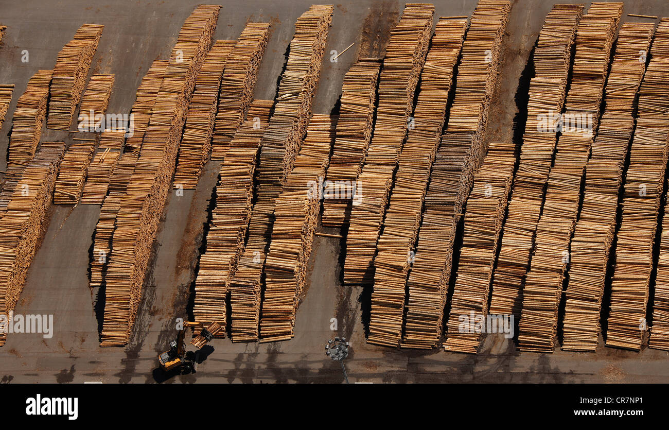 Aerial view, piles of wood, wood industry, Egger Holzwerkstoffe Brilon GmbH & Co KG, Brilon, Sauerland region - Stock Image