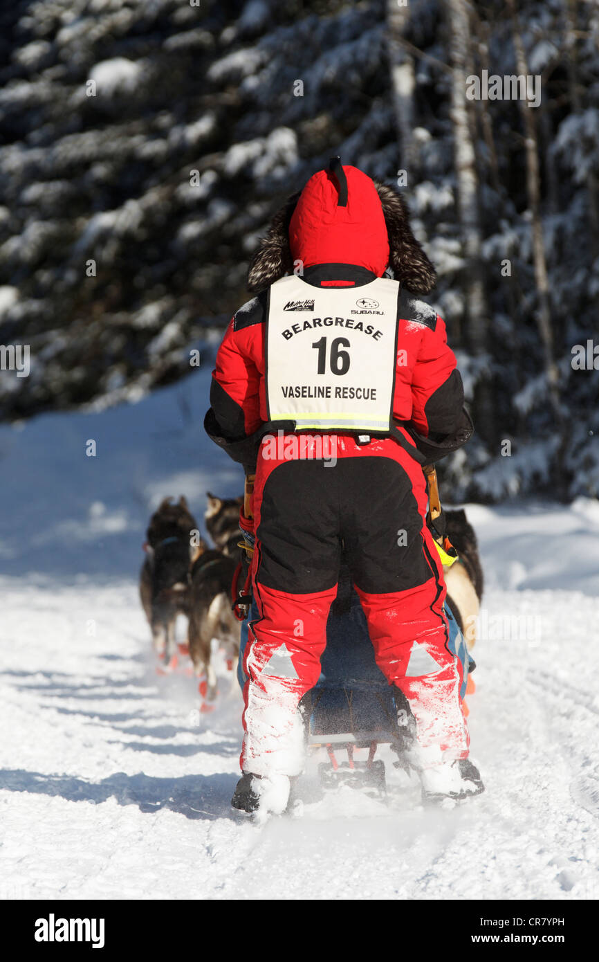 Musher Colleen Wallin competes on day 1 of the 2011 John Beargrease Sled Dog Marathon on January 30, 2011 in Duluth, - Stock Image