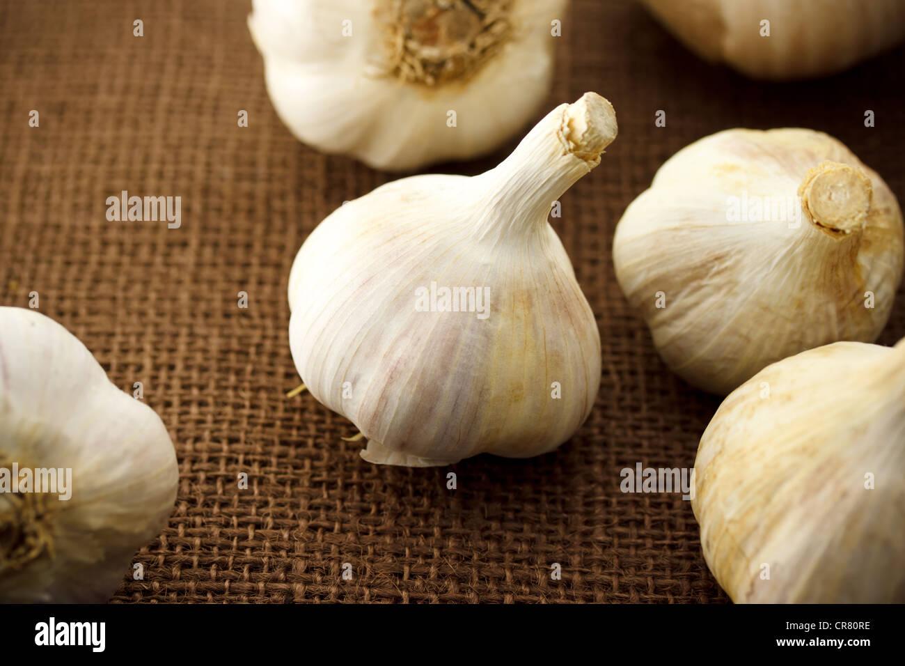 Whole Garlic - Stock Image