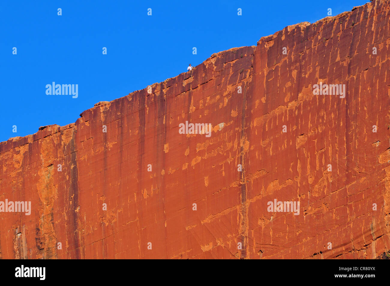 Australia, Northerm Territory, outback region, Watarrka National Park, Kings Canyon, bottom of canyon view from - Stock Image