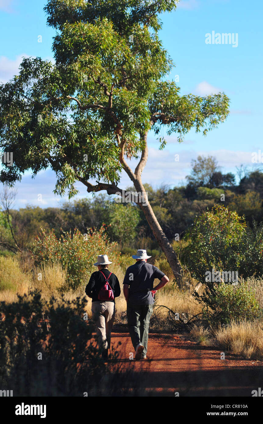 Australia, Northerm Territory, outback region, Watarrka National Park, Kings Canyon, trail of down canyon - Stock Image