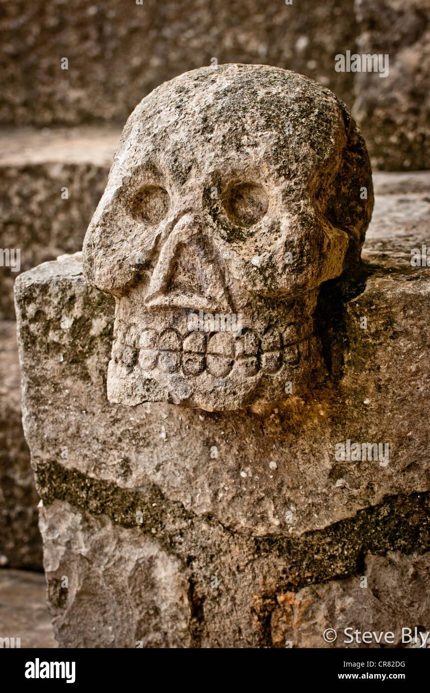 Maya Skeleton Stock Photos & Maya Skeleton Stock Images - Alamy