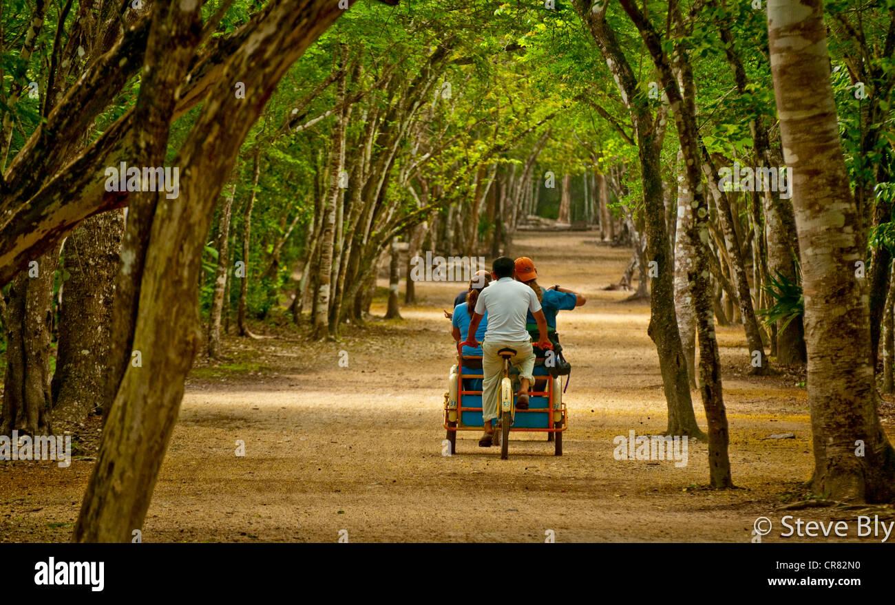 Tourists enjoy a bici-taxi ride on the path to the Maya ruins of Coba, Riviera Maya, Yucatan Penisula, Quintana - Stock Image