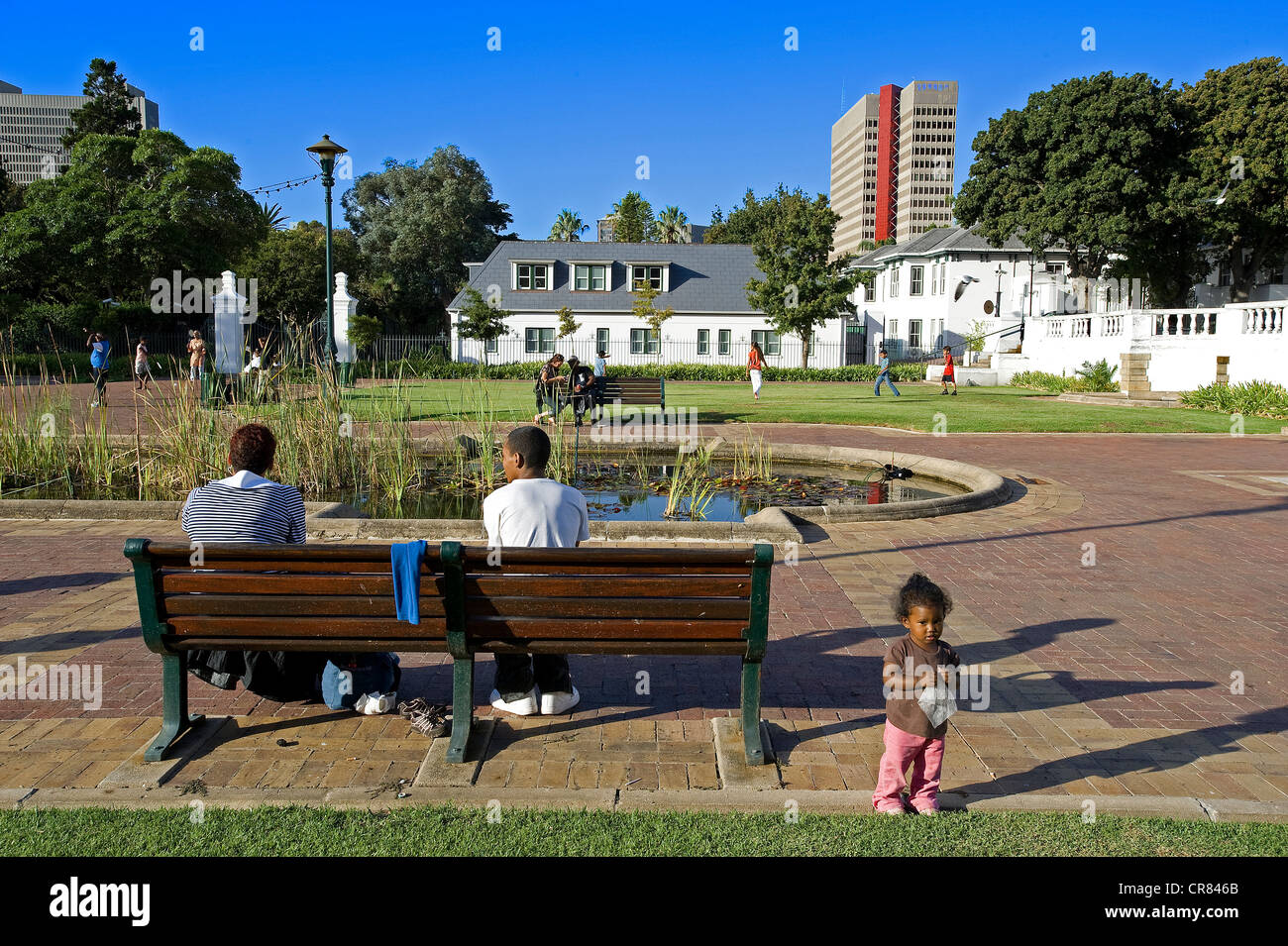 South Africa, Western Cape, Cape Town, Company's Garden - Stock Image
