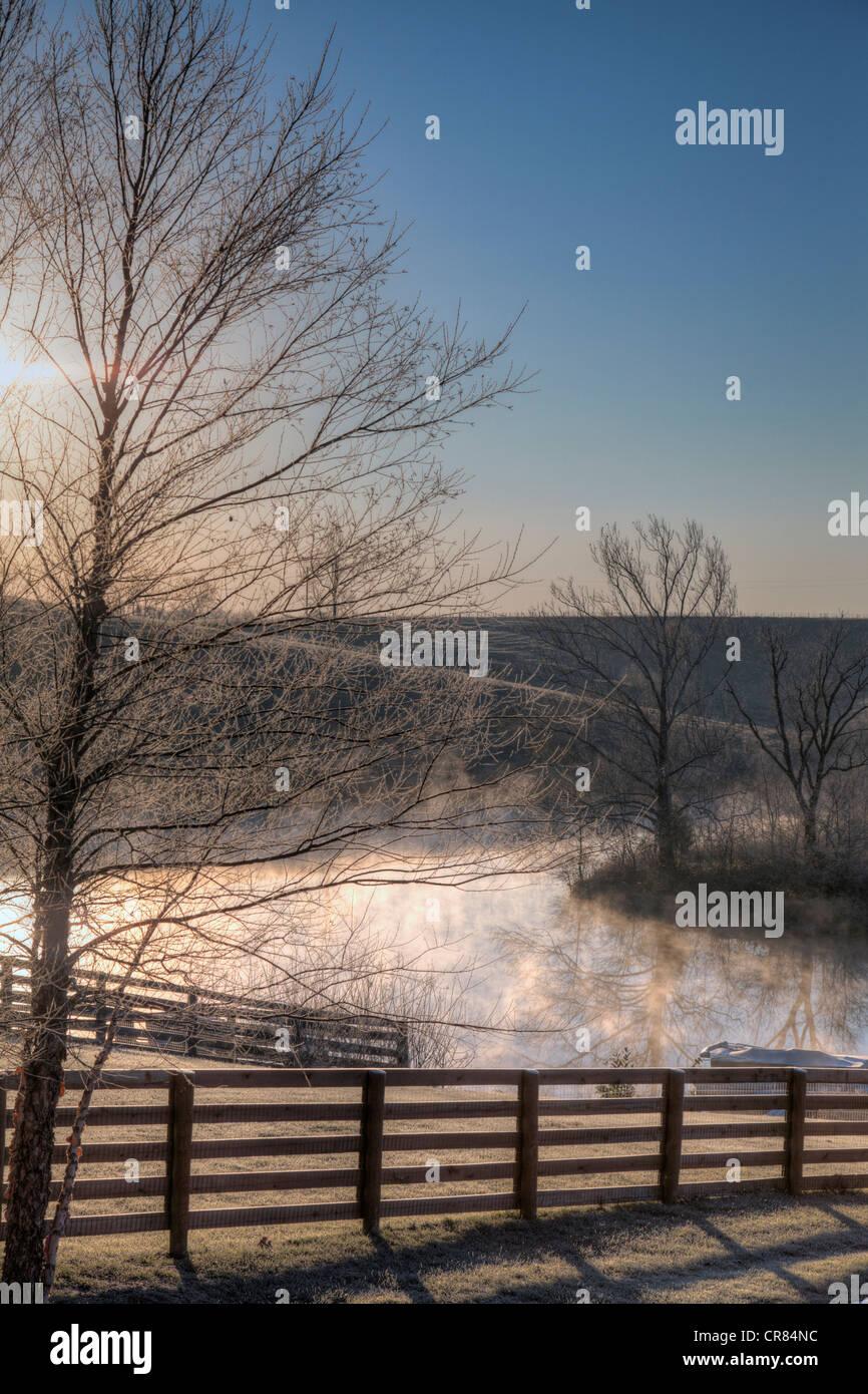 Frosty morning - Stock Image