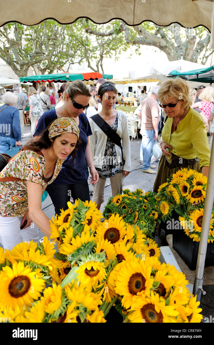 France Gard Uzes listed as town of art and history sunflowers bouquet on Place aux Herbes market among scents of Stock Photo