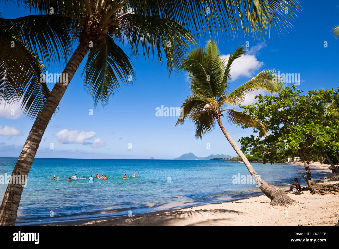 France, Martinique (French West Indies), Anse Figuier, the beach Stock Photo
