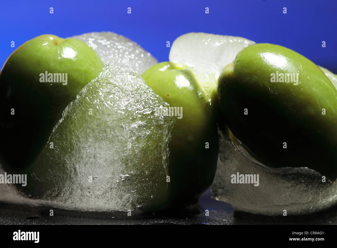 Gastronomia saludable - Stock Image