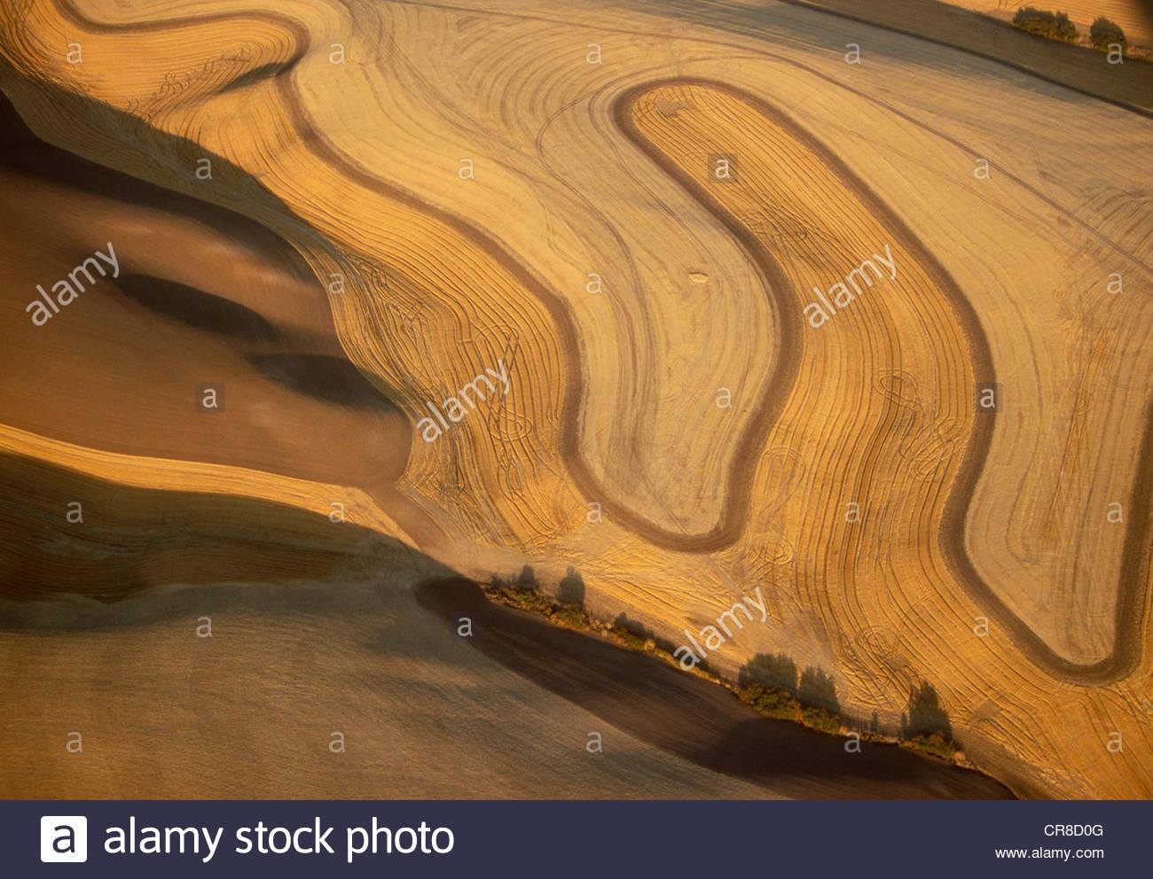 Aerial of Palouse region, Washington - Stock Image