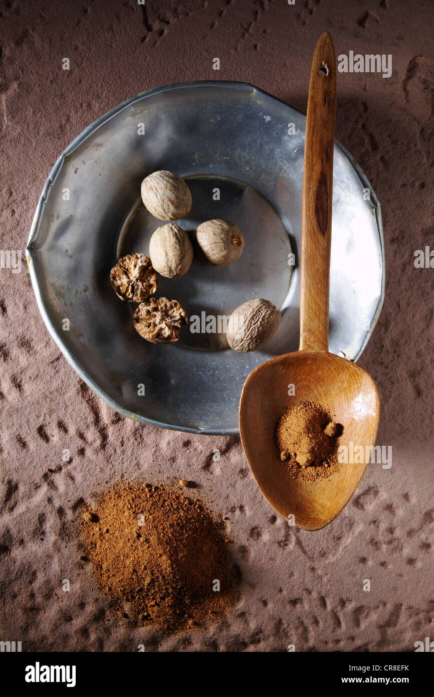Nutmegs (Myristica fragrans), on a metal plate with a wooden spoon and ground nutmeg on a rustic stone base Stock Photo