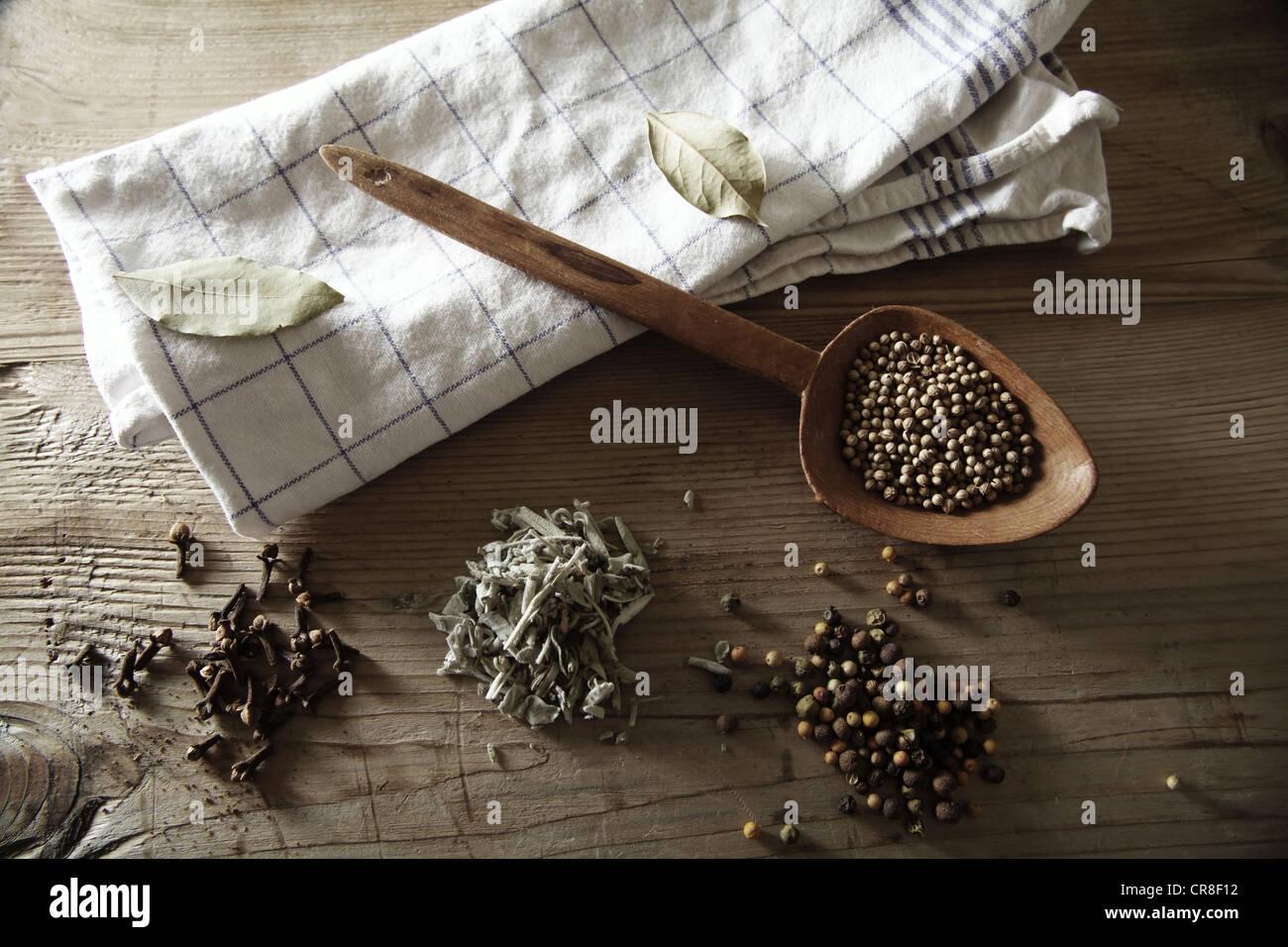 Coriander (Coriandrum sativum), Peppercorns (Piper nigrum), Sage (Salvia) and dried Cloves (Syzygium aromaticum) - Stock Image