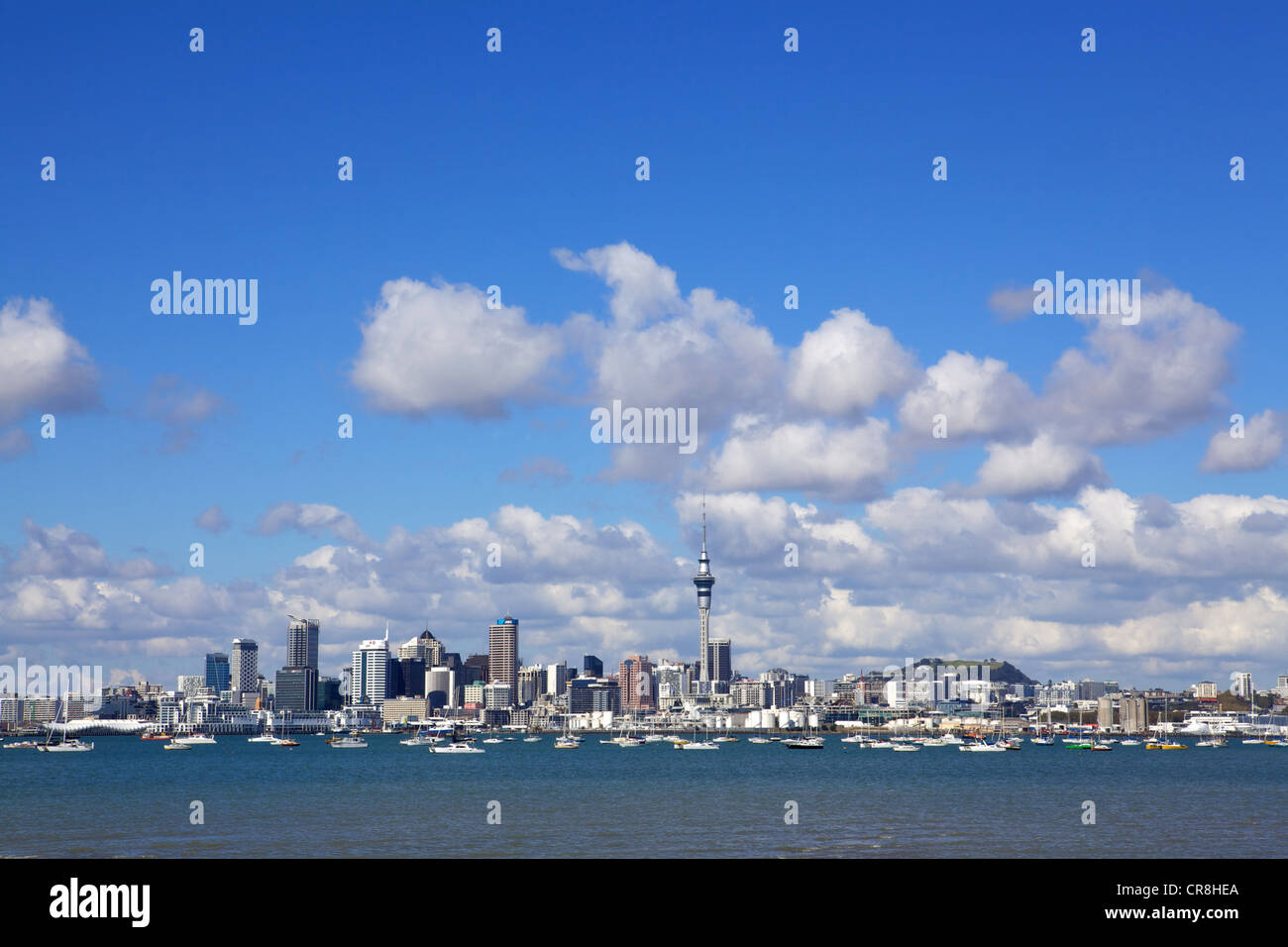 Auckland harbour skyline, New Zealand - Stock Image