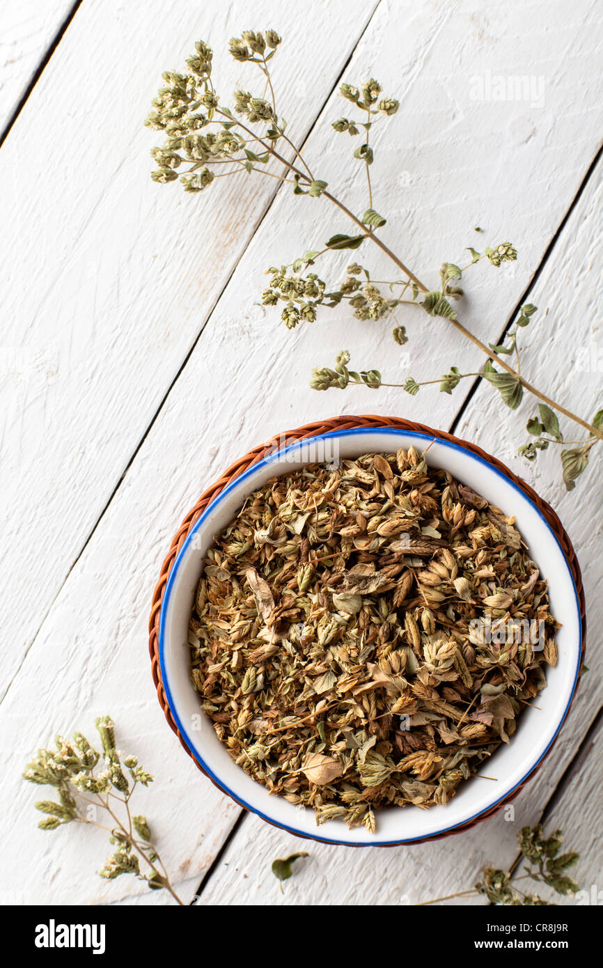 Dried Oregano in a Bowl on White Wood - Stock Image