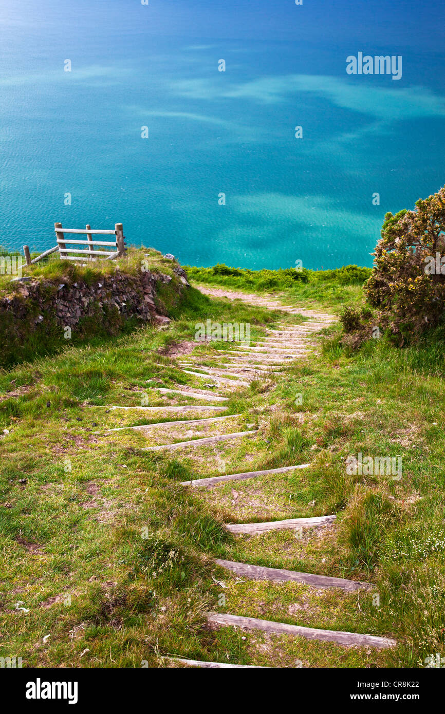 Wooden steps cut into a steep section of the South-West Coast Path near Lynton and Lynmouth, north Devon, England, - Stock Image