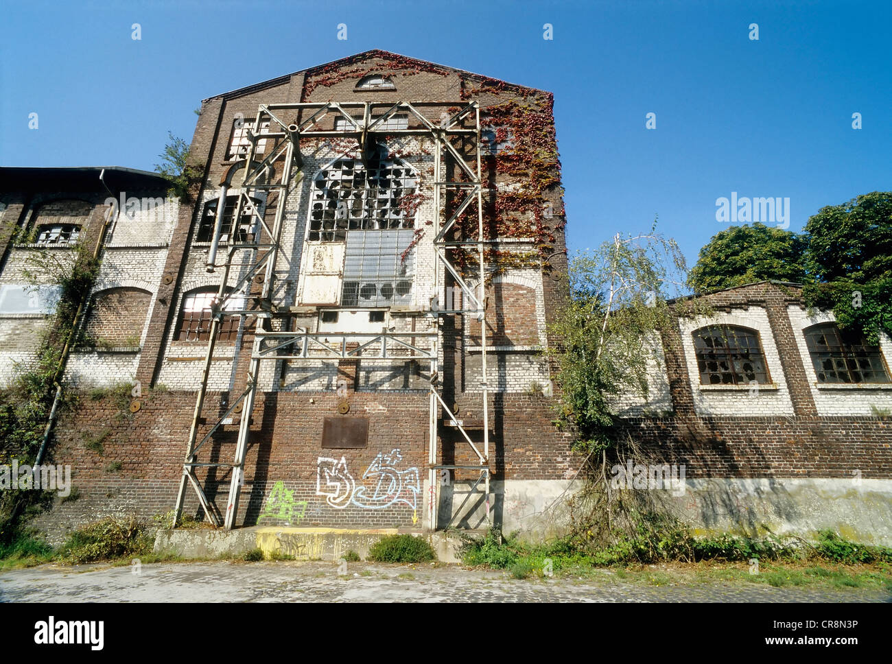 Ruined storage warehouse, Alter Rheinhafen harbour, Uerdingen district, Krefeld, North Rhine-Westphalia, Germany, - Stock Image