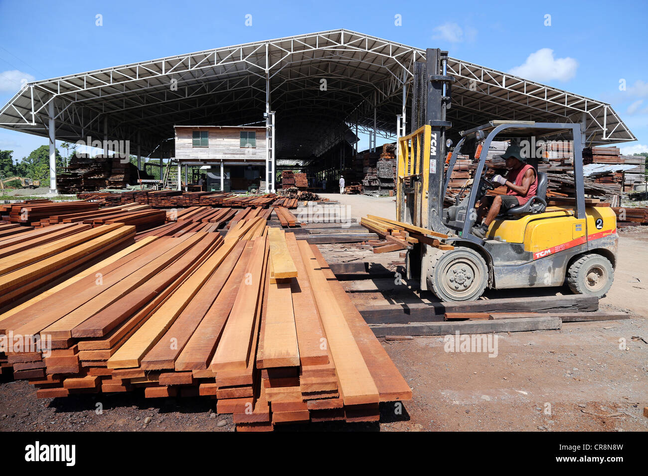 Sawmill, wood processing factory Santi Forestry, Madang, Papua Neuguinea - Stock Image