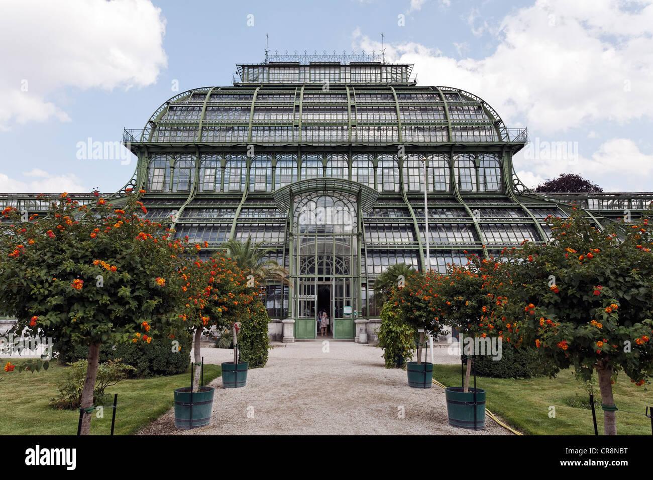 Palmenhaus greenhouse, historic iron structure, Schloss Schoenbrunn palace, Hietzing district, Vienna, Austria, - Stock Image