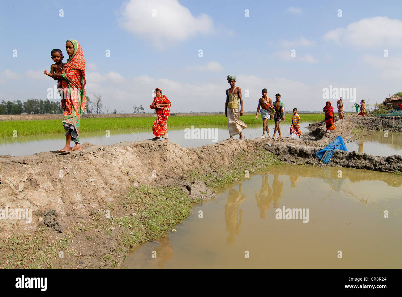 essay rivers bangladesh Write the short composition: write bangladesh is a land of riversshe has more than 230 rivers these rivers have flowed over this country our agriculture, energy sector, waterway communication, economy, trade etc are greatly dependent on our rivers.