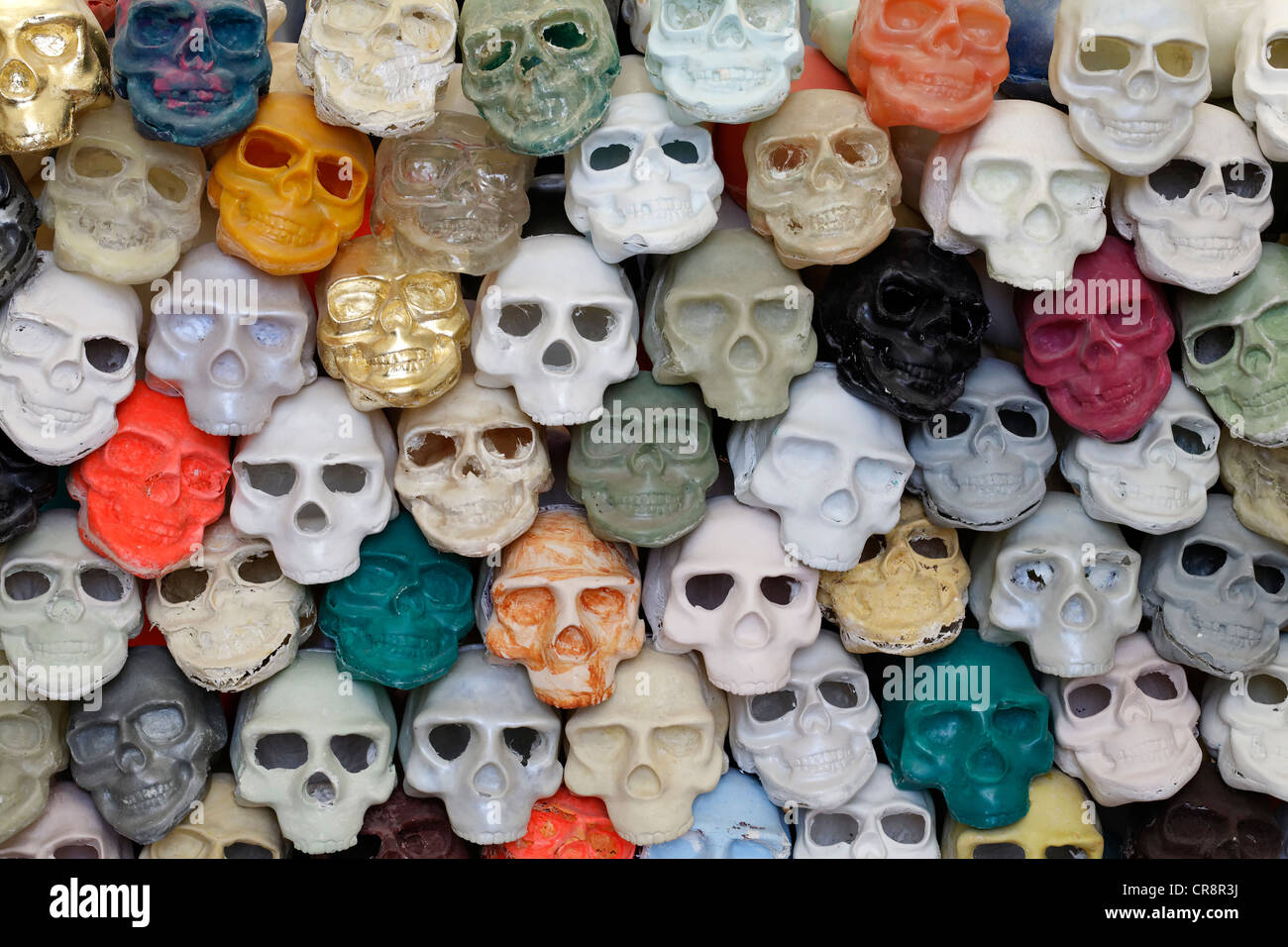 Colorfully painted plastic skulls, art work, exhibition of student works, Kunstakademie Duesseldorf arts academy - Stock Image