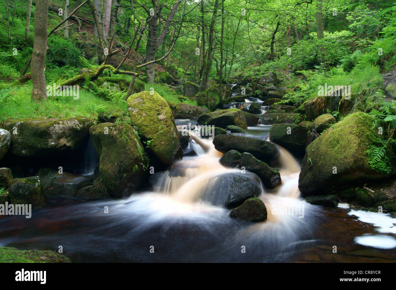 UK,Derbyshire,Peak District,Burbage Brook Flowing Through Padley Gorge - Stock Image