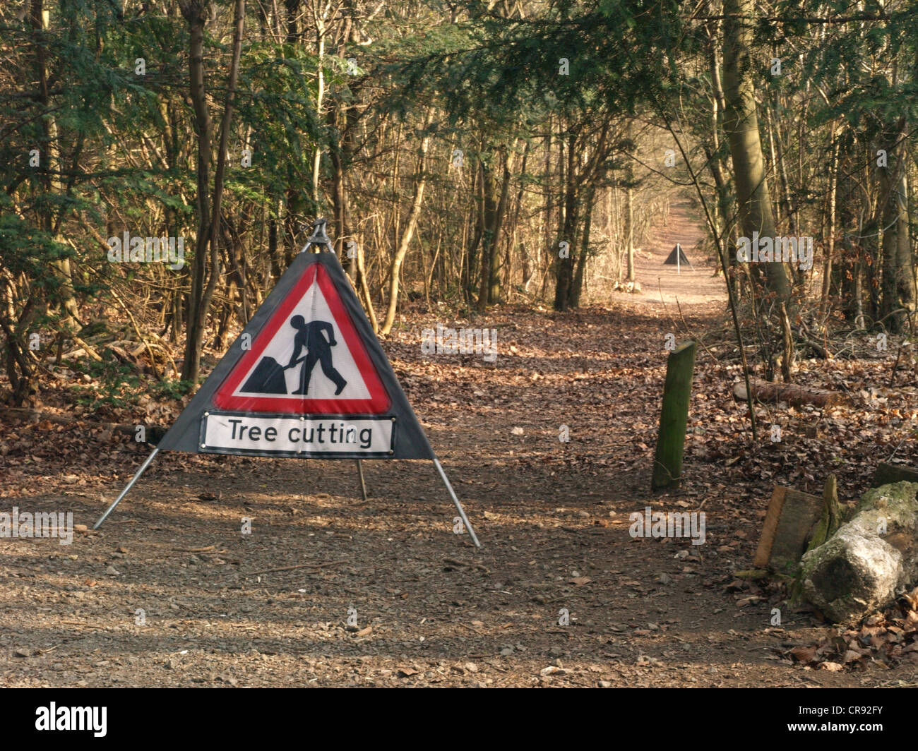 Tree cutting men at work warning signs, in the woods for walkers - Stock Image