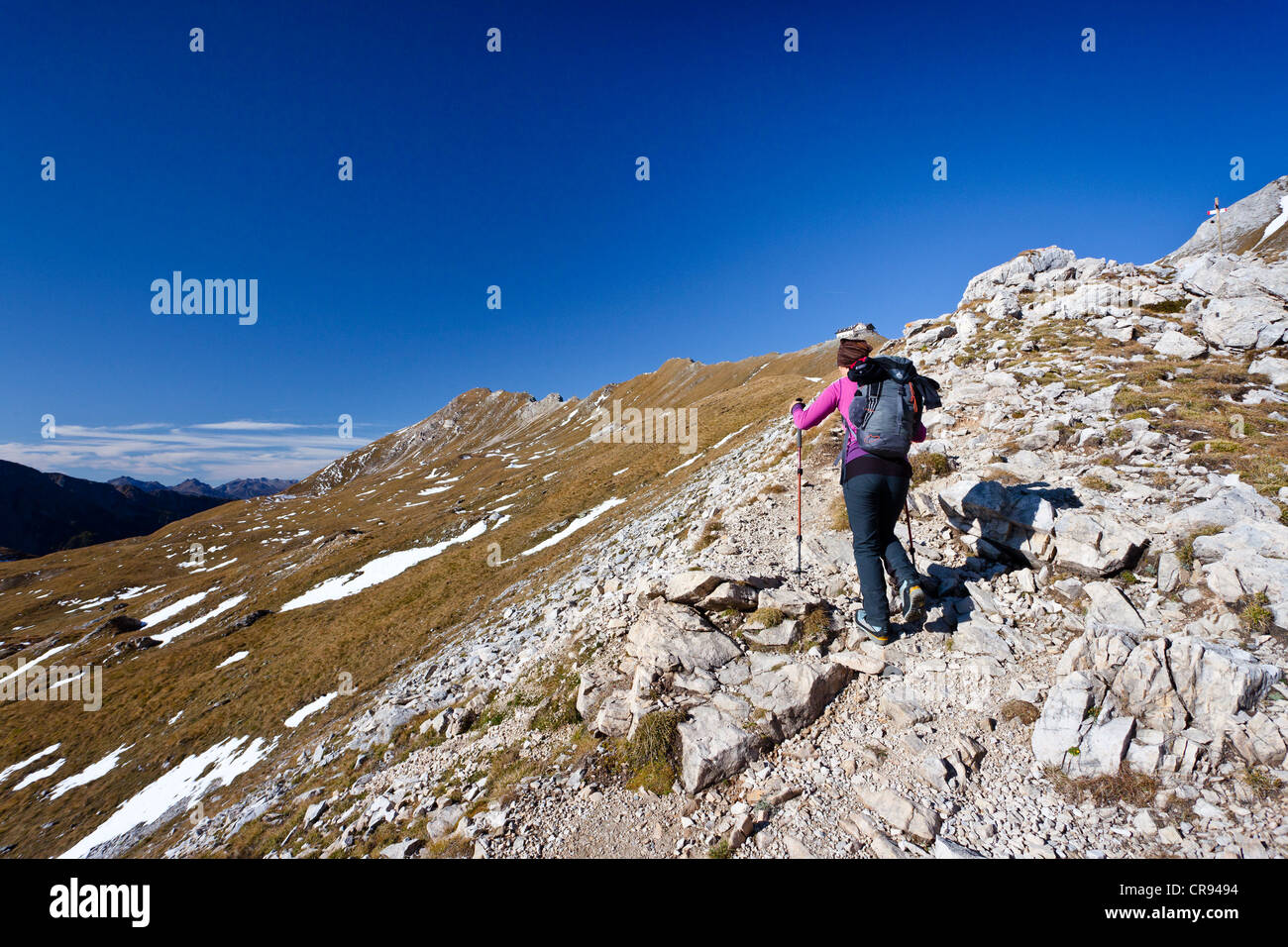 Hiker during the ascent to Bepi Zac climbing route in the San Pellegrino Valley above the San Pellegrino Pass, Dolomites Stock Photo