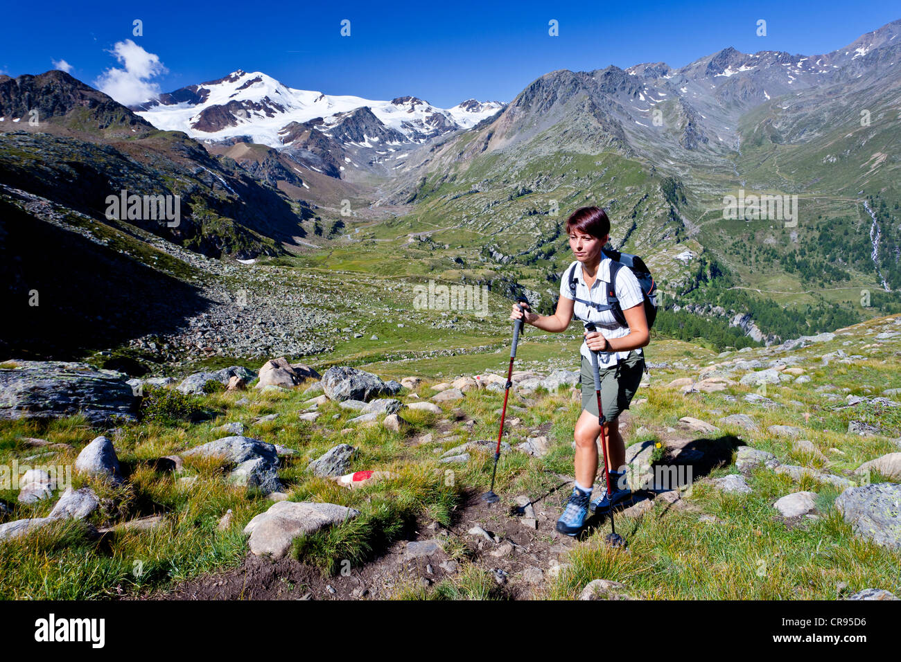 Hiker ascending to Mt. Rotspitz in the Martell vally, behind Mt. Cevedale and Mt. Zufallspitz, South Tyrol, Italy, - Stock Image