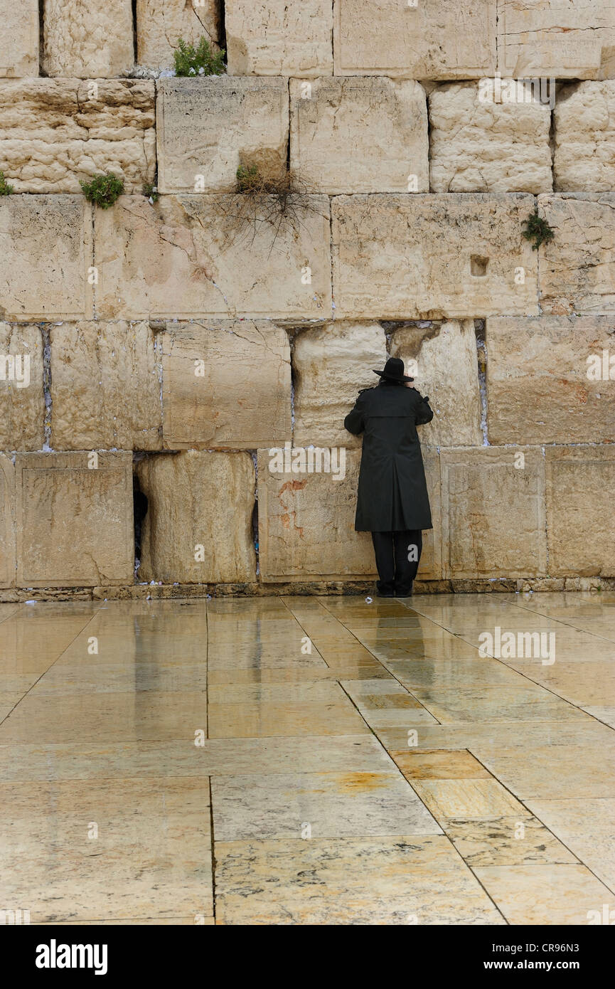 Orthodox Jew praying at the Wailing Wall, old town, Jerusalem, Israel, Middle East - Stock Image