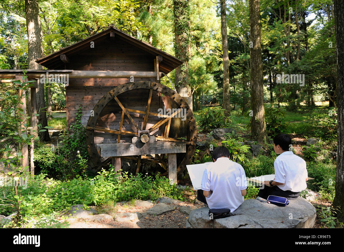 School children drawing plants and a rice mill all day at the Botanical Garden in Kyoto, East Asia, Asia - Stock Image