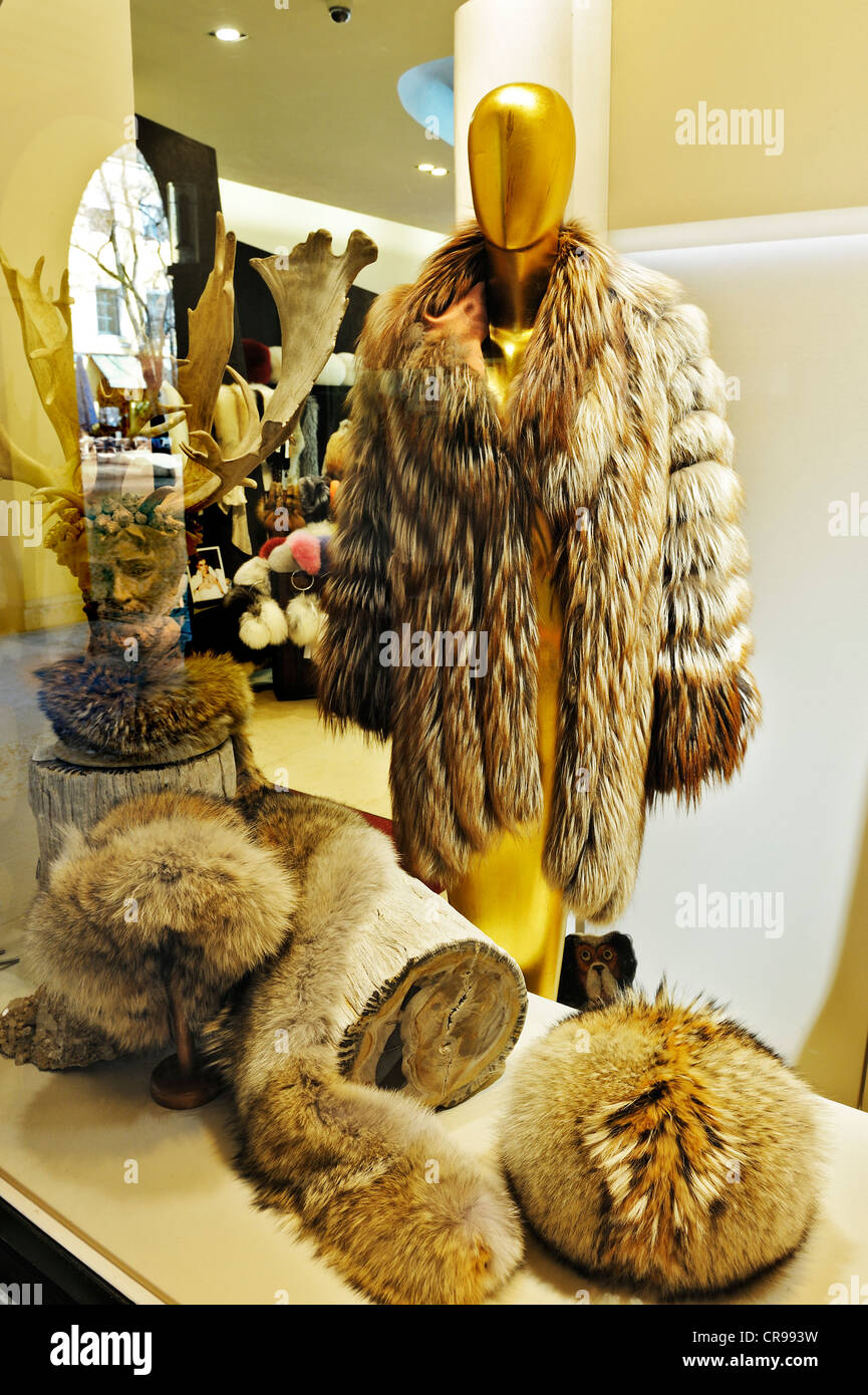Display in a fur shop in Theatinerhof, Munich, Bavaria, Germany, Europe - Stock Image