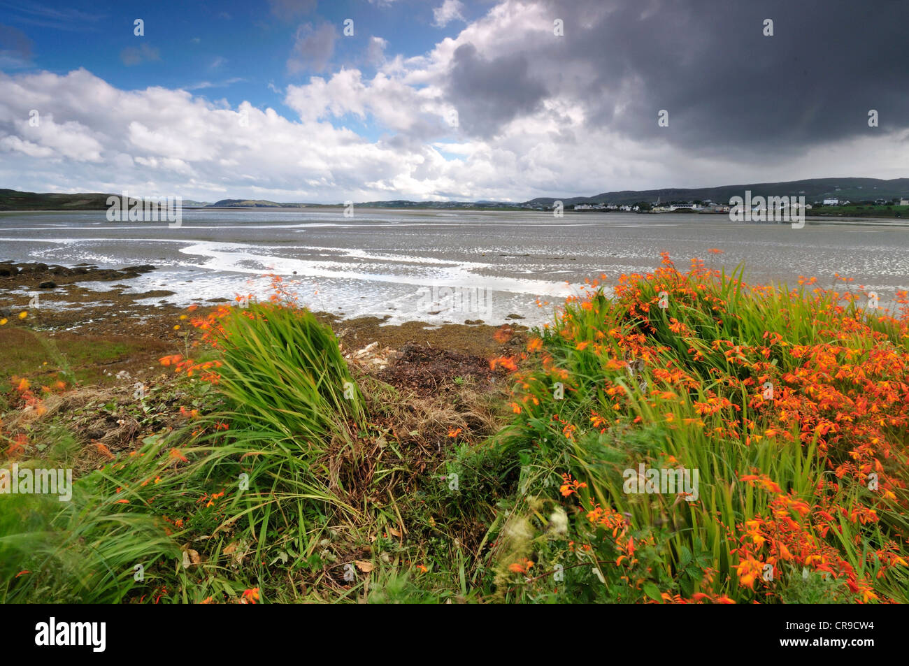 Dunfanaghy, Donegal, Ireland, Europe - Stock Image