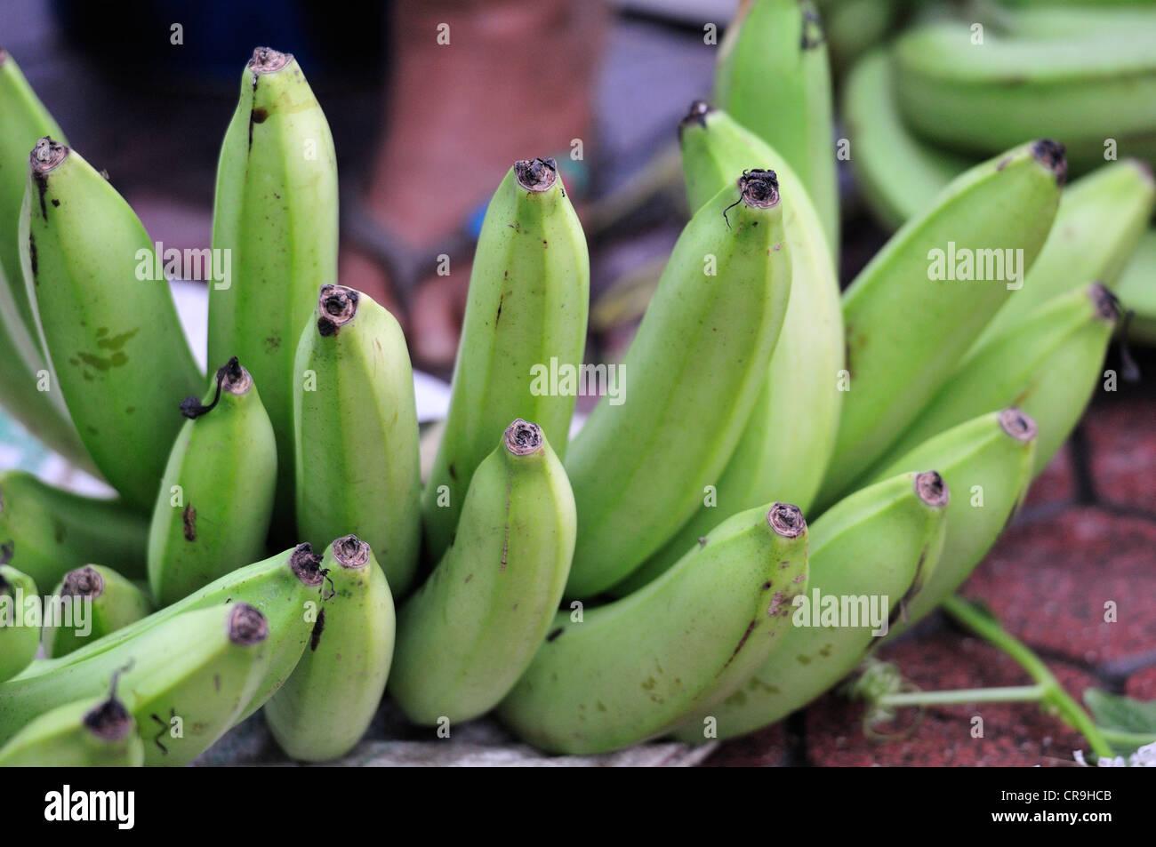 Fruits of banana (Musa balbisiana), Tegallalang market, Ubud, Bali, Indonesia, Asia - Stock Image