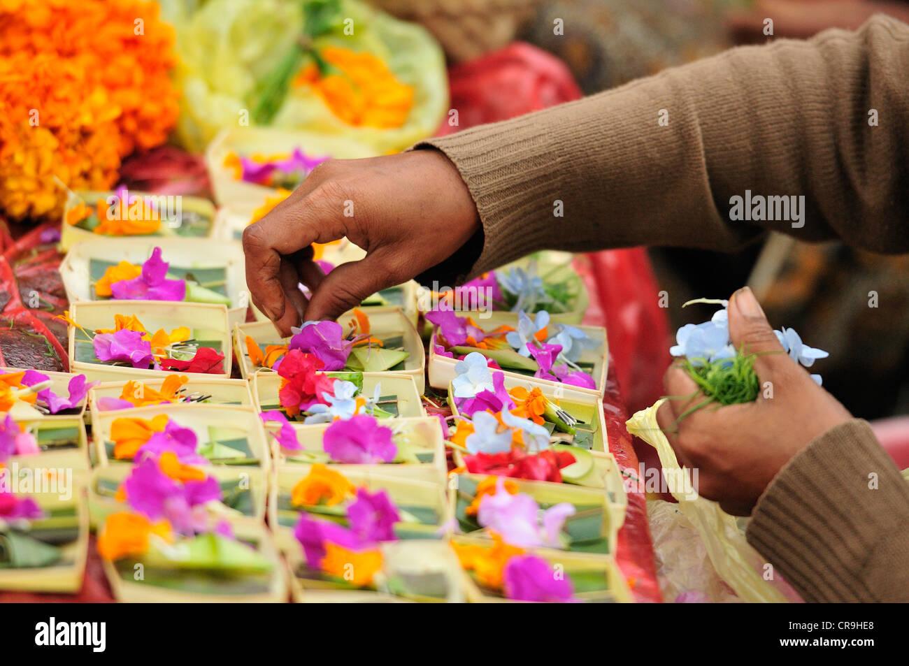 Balinese offerings flowers, Tegallalang market, Ubud, Bali, Indonesia, Asia - Stock Image