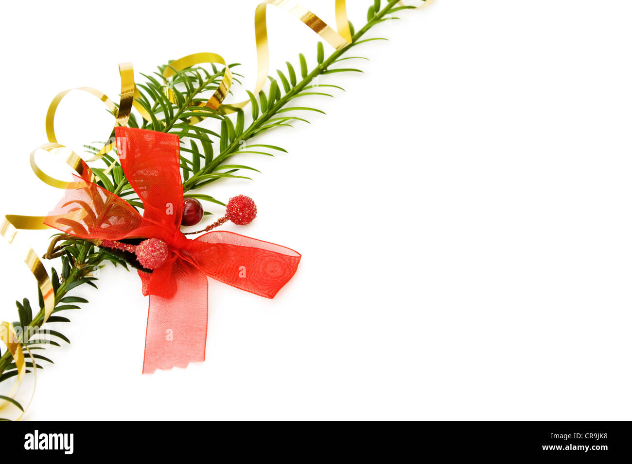 Christmas border with pine tree branch and festive red ribbons decorations. Isolated on white background. - Stock Image