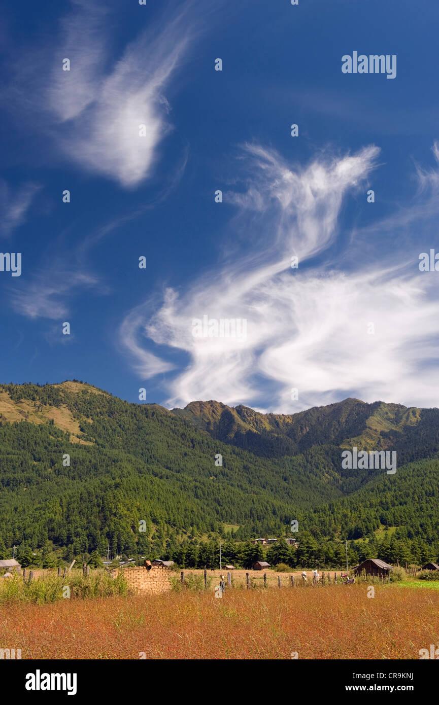 Bumthang, Chokor Valley, Bhutan, Asia - Stock Image