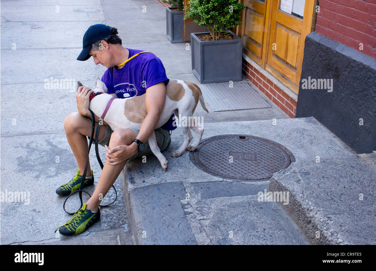 Volunteer dog handler with female pitbull outside of Animal Haven in Soho, New York City - Stock Image
