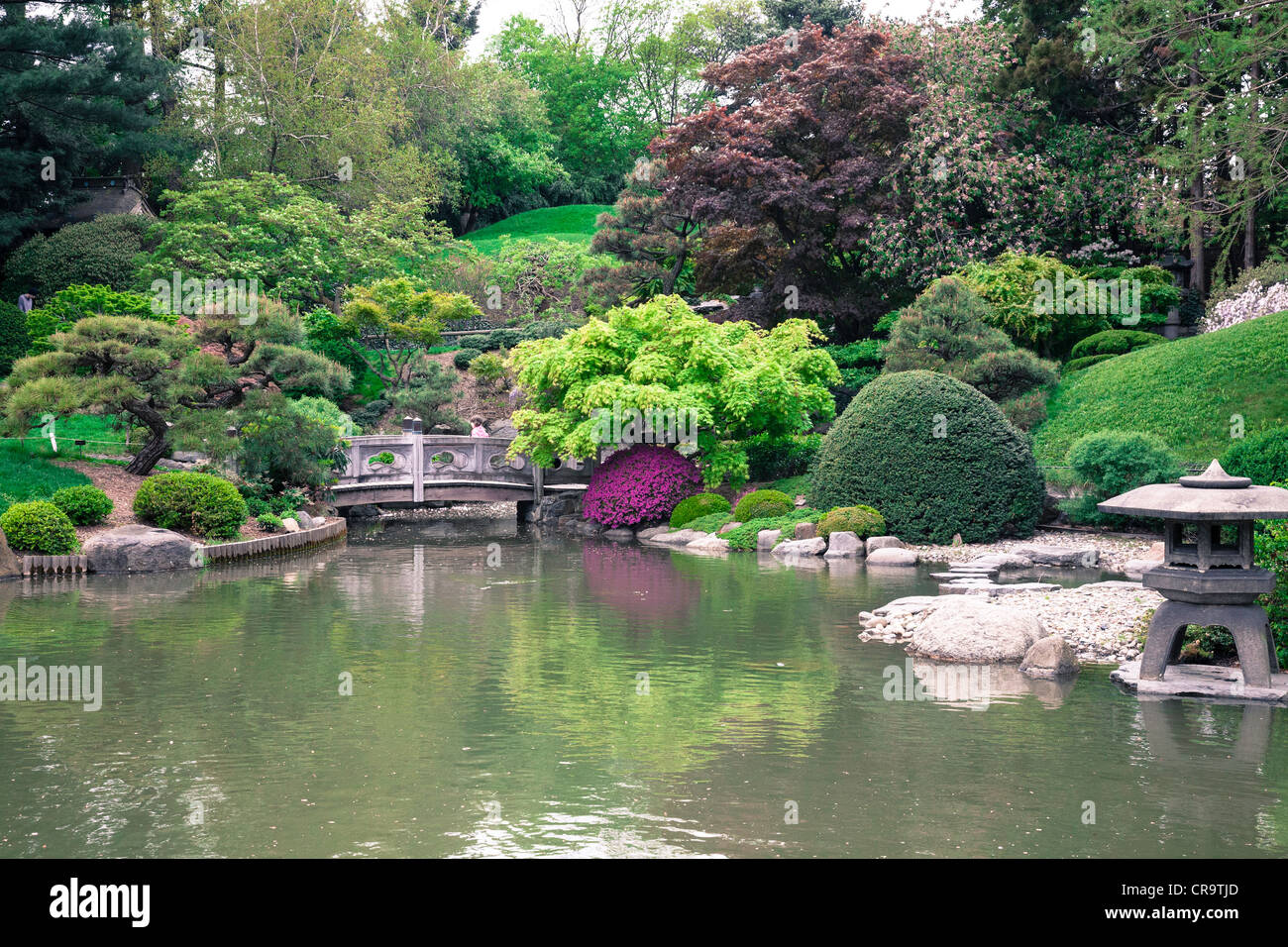 Japanese Hill And Pond Garden In The Brooklyn Botanic Garden Nyc Stock Photo 48774725 Alamy