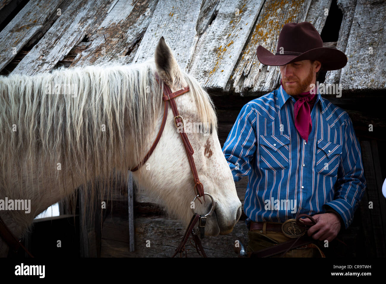 A cowboy and his horse on a ranch in northeastern Wyoming - Stock Image