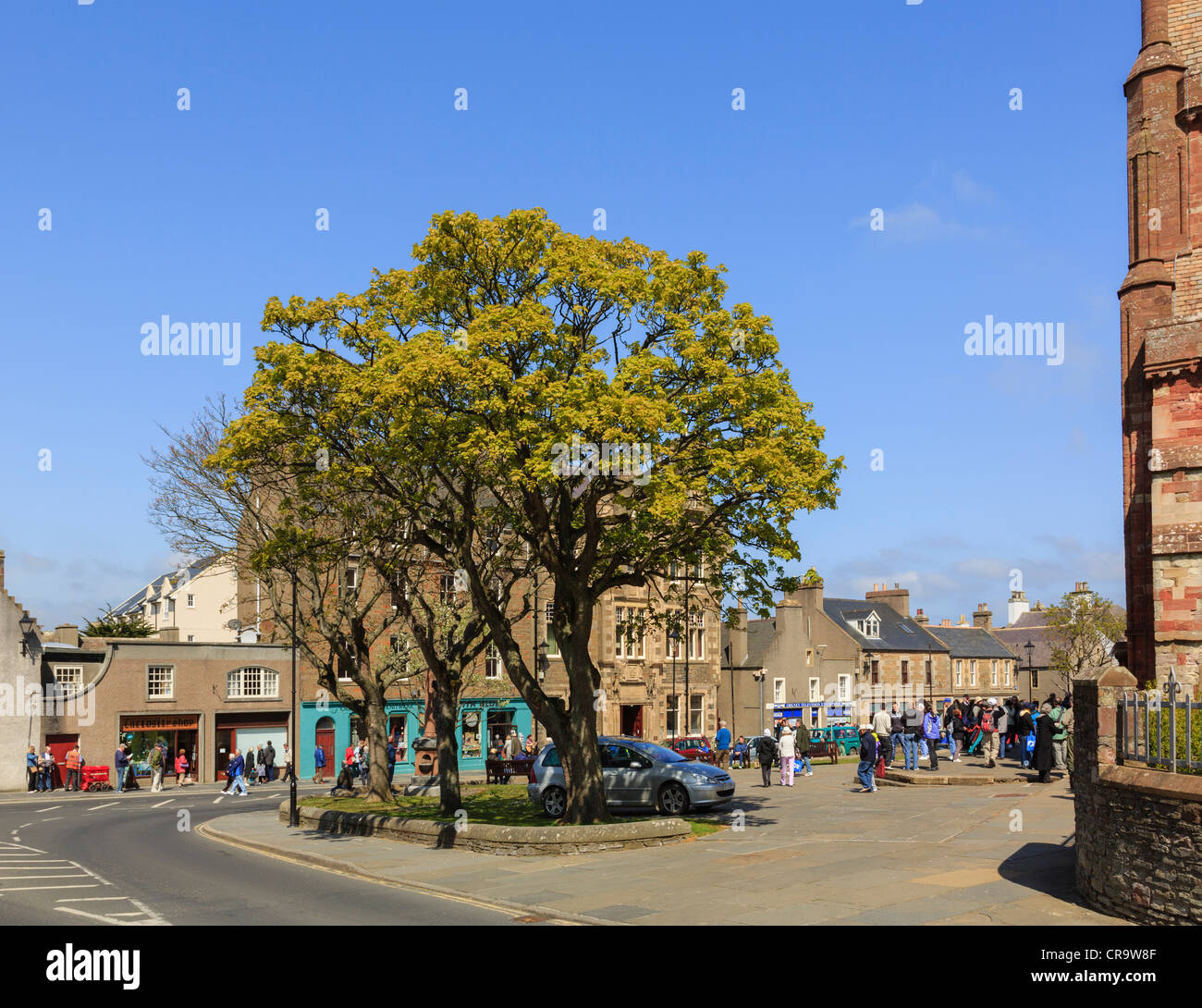 Street scene at Kirk Green with trees growing outside St Magnus cathedral. Kirkwall Orkney Mainland Northern Isles - Stock Image