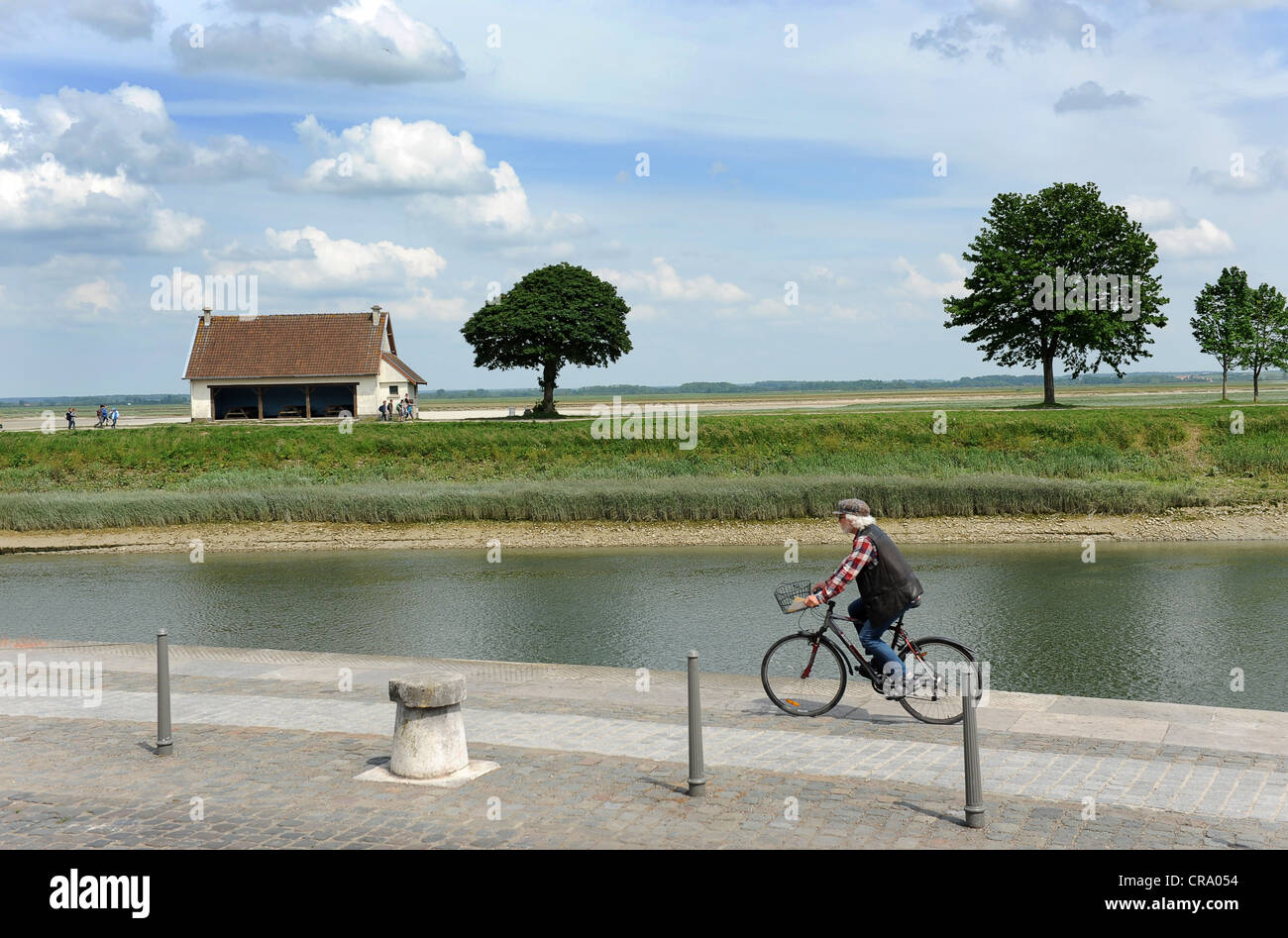 Man riding bicycle along River Somme in the baie de somme St Valery Sur Somme Picardy France - Stock Image