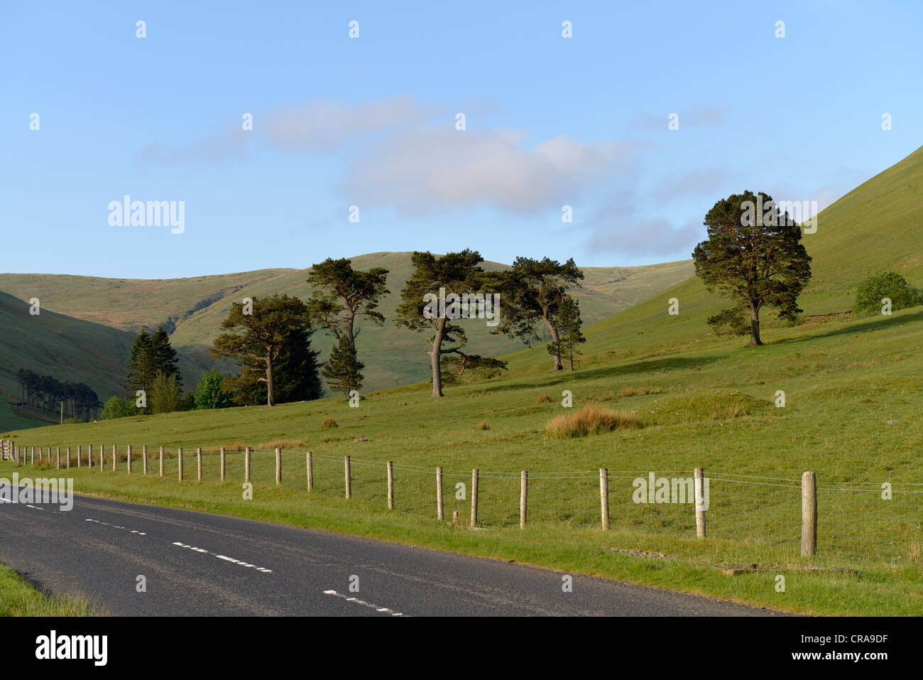 Scottish Borders Deserted Road -1 - Stock Image