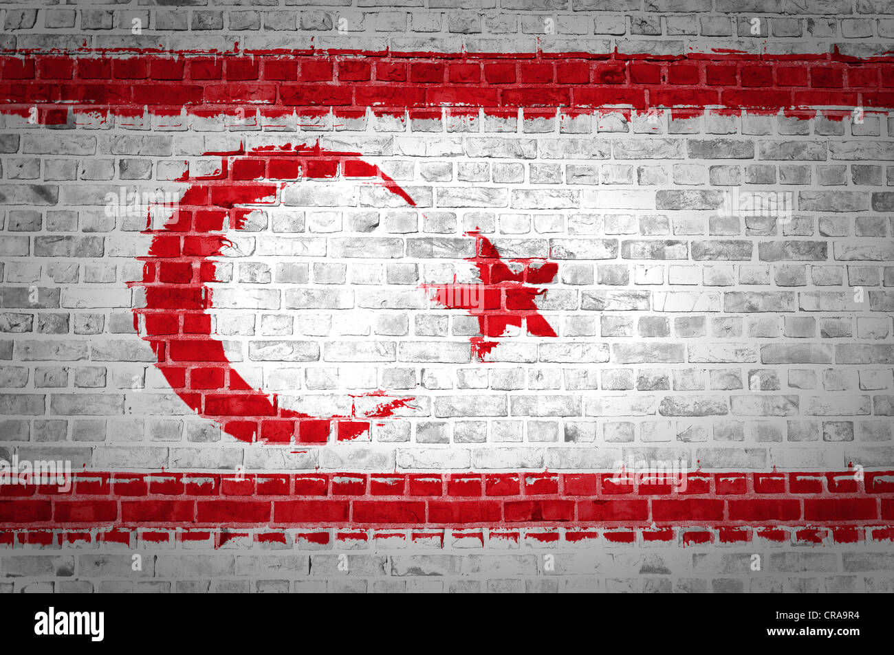 An image of the Northern Cyprus flag painted on a brick wall in an urban location - Stock Image