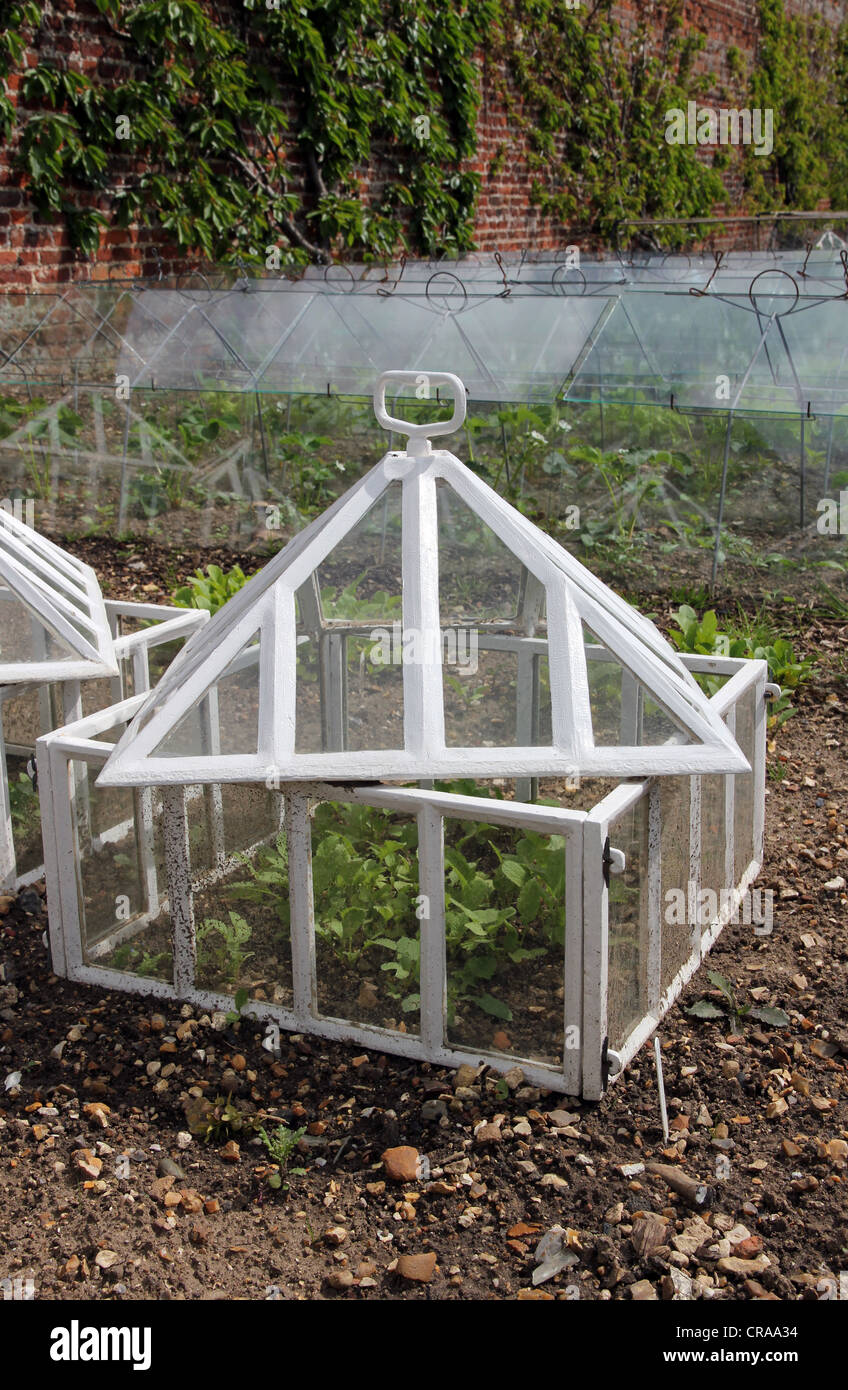 cold frame in walled garden of stately home - Stock Image