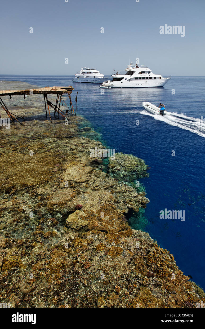 Dive ships anchor off the jetty in front of the reef top, rubber dhingy, Daedalus Reef, Egypt, Red Sea, Africa - Stock Image