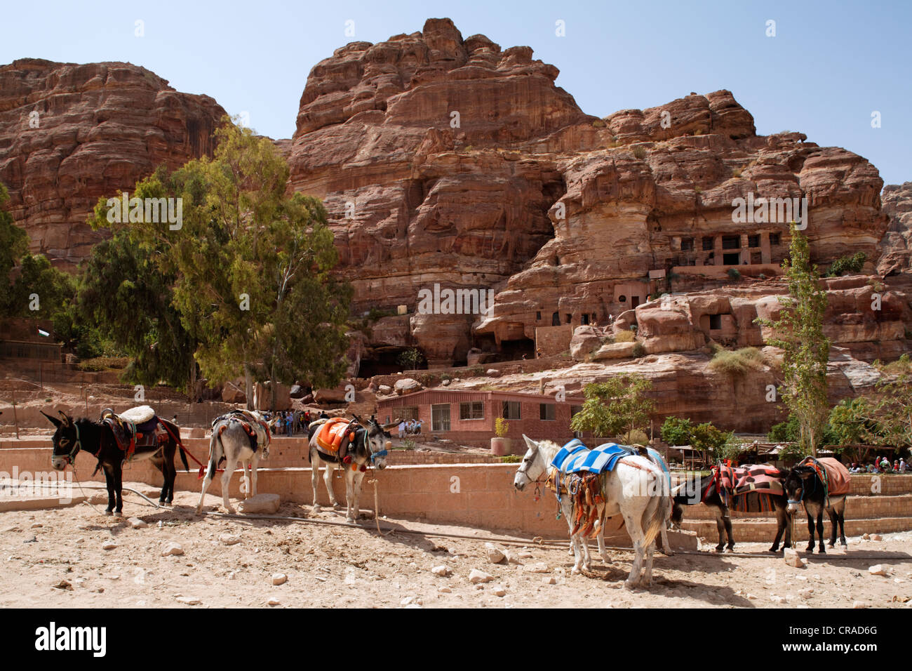 Donkeys, trees and a restaurant, Petra, the capital city of the Nabataeans, rock city, UNESCO World Hertage Site, - Stock Image