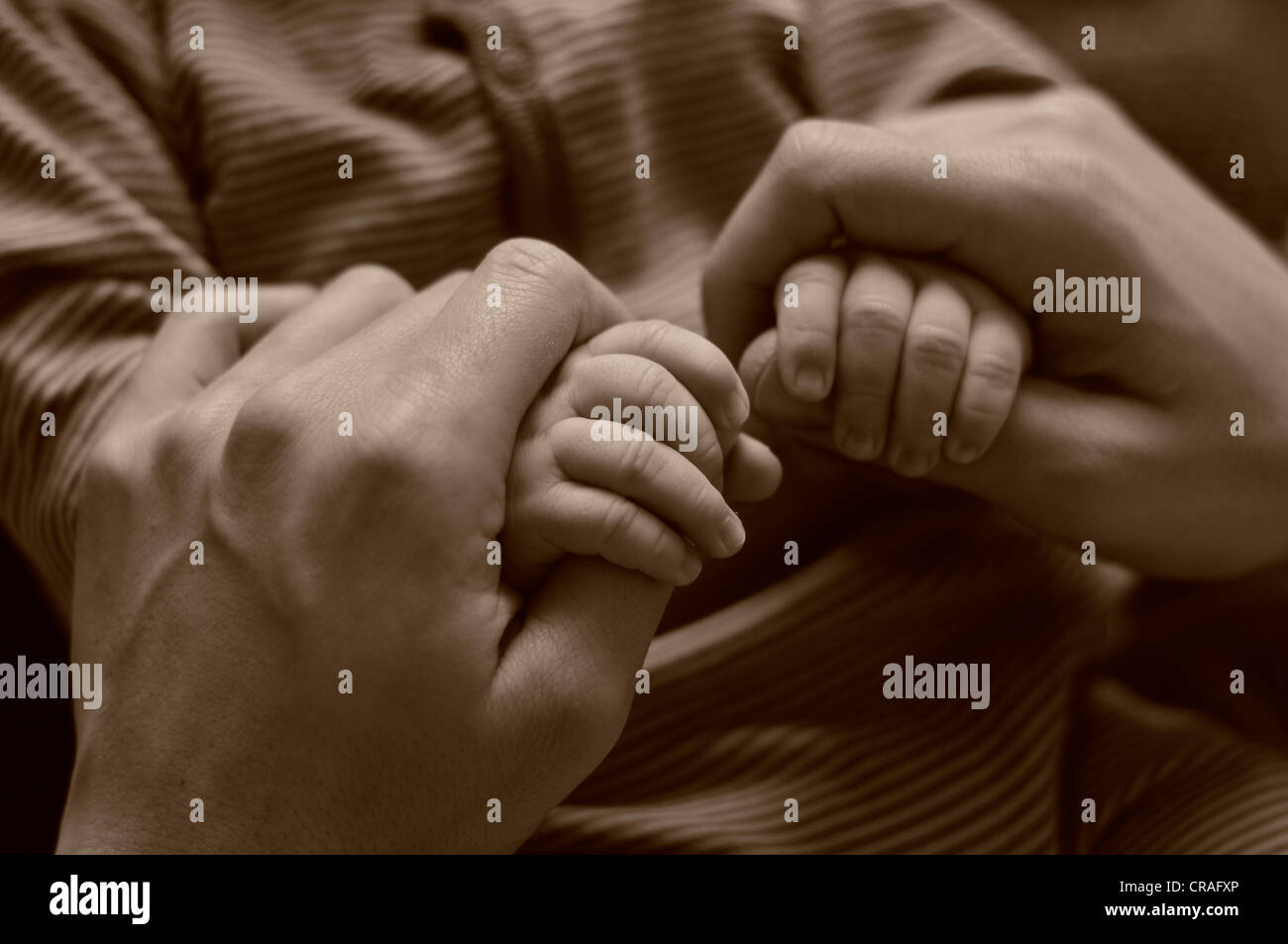 Parental hands holding the hands of a baby - Stock Image