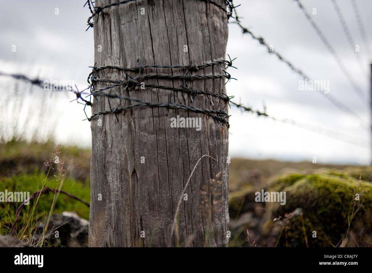 Wooden post and barbed wire, fence near Kirkjubæjarklaustur, Kirkjubaejarklaustur, Skaftárhreppur, Suðurland, - Stock Image