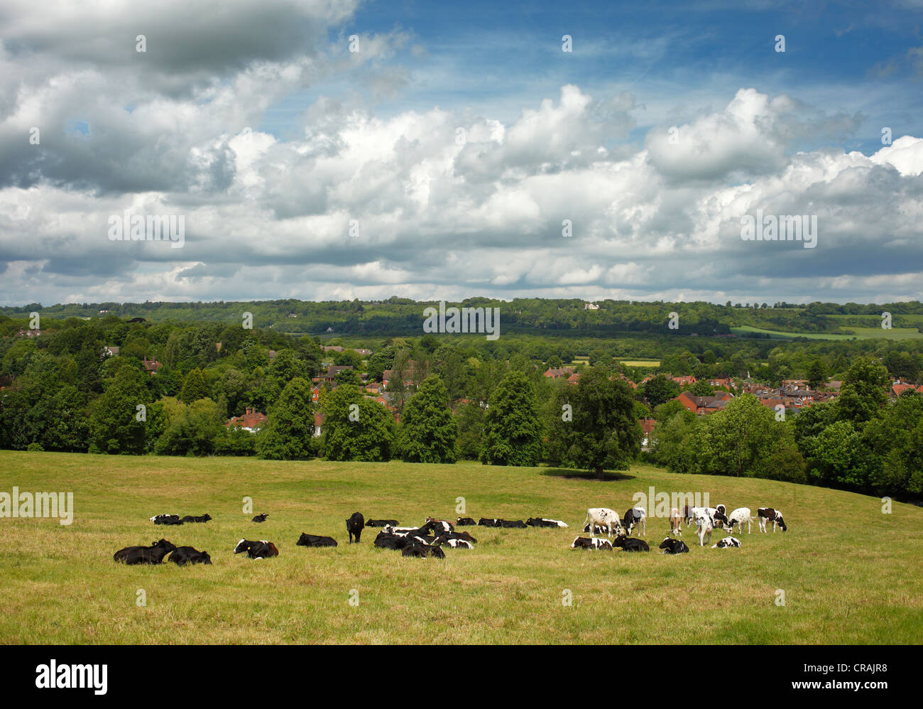 View of Westerham and the North Downs Kent. - Stock Image
