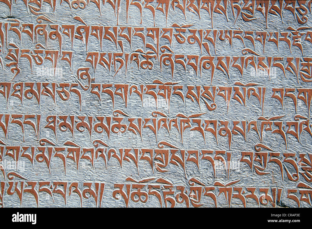Tibetan Buddhist mantras engraved in stone, Tongde monastery, Zanskar valley, Zanskar, Ladakh, Jammu and Kashmir - Stock Image