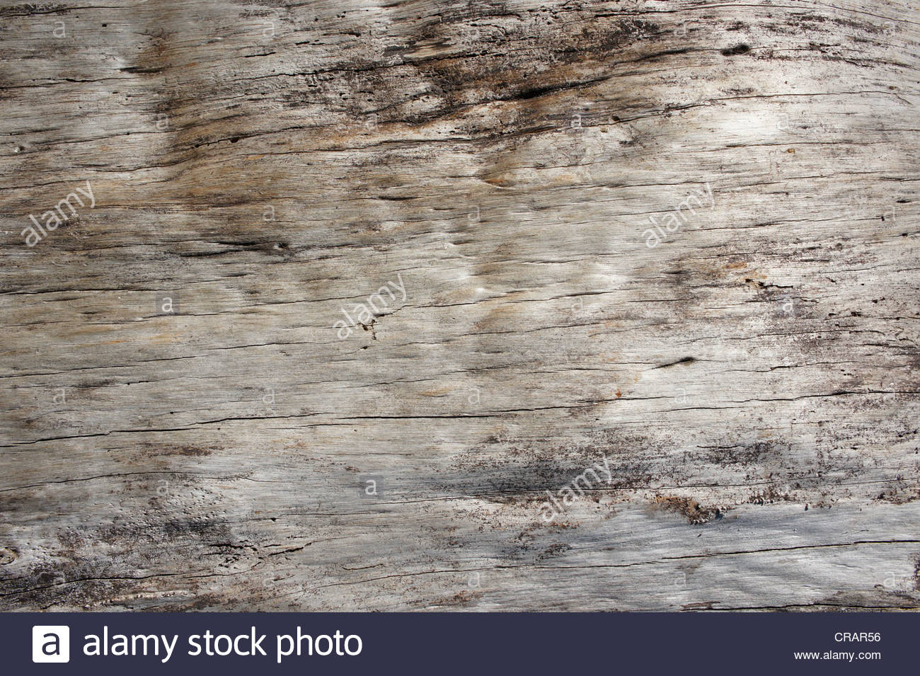 The wooden base - Stock Image